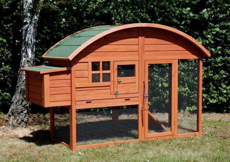 Investir dans un projet d'élevage de poules